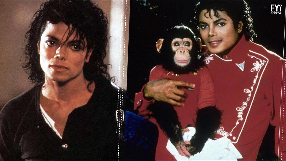 Conoce La Coleccion De Autos De Michael Jackson Fotos Autocity