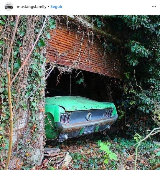 buscan desaparecer autos clásicos